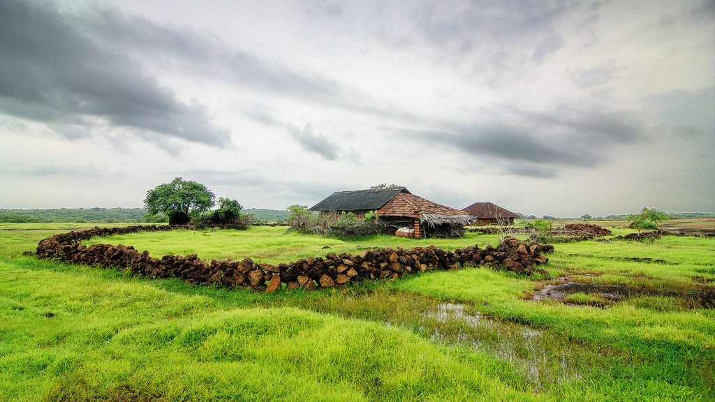 The Crucial Role Of Agriculture In The Indian Economy